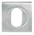 DELF ARCHITECTURAL CP  PH OVAL ESCUTCHEON DPH591CP