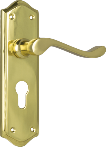 Tradco 'HENLEY' LEVER EURO Polished Brass 180mm x 50mm 1074E