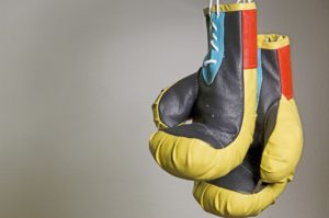 Grant boxing gloves are loved because of their superb craftsmanship.