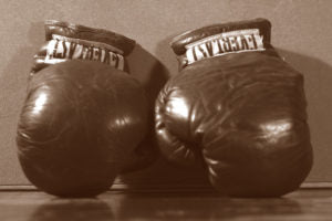 Everlast is the world-renowned brand of boxing gloves.
