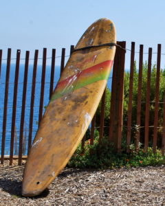 Longboards showed a rise in popularity in the 1990s.