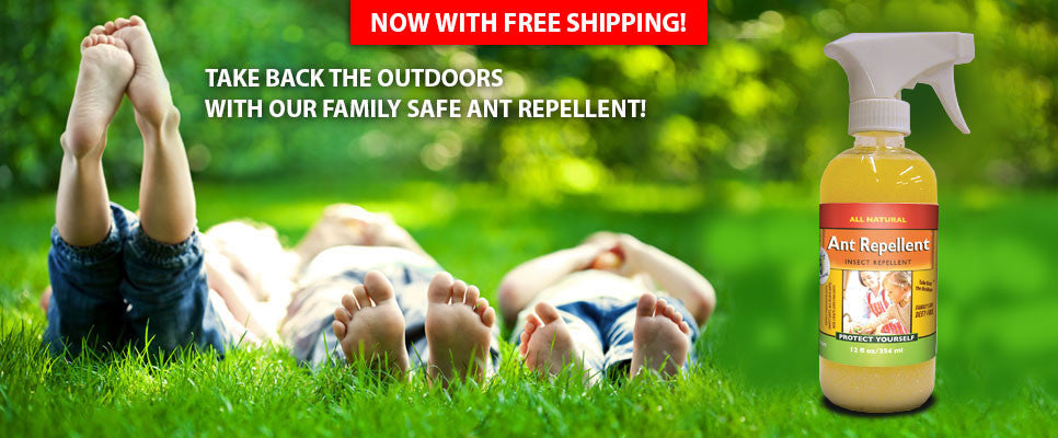 All Natural Insect Repellent