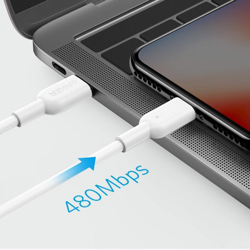 Anker USB C to Lightning Cable PowerLine II for iPhone Supports Power Delivery - asmpick