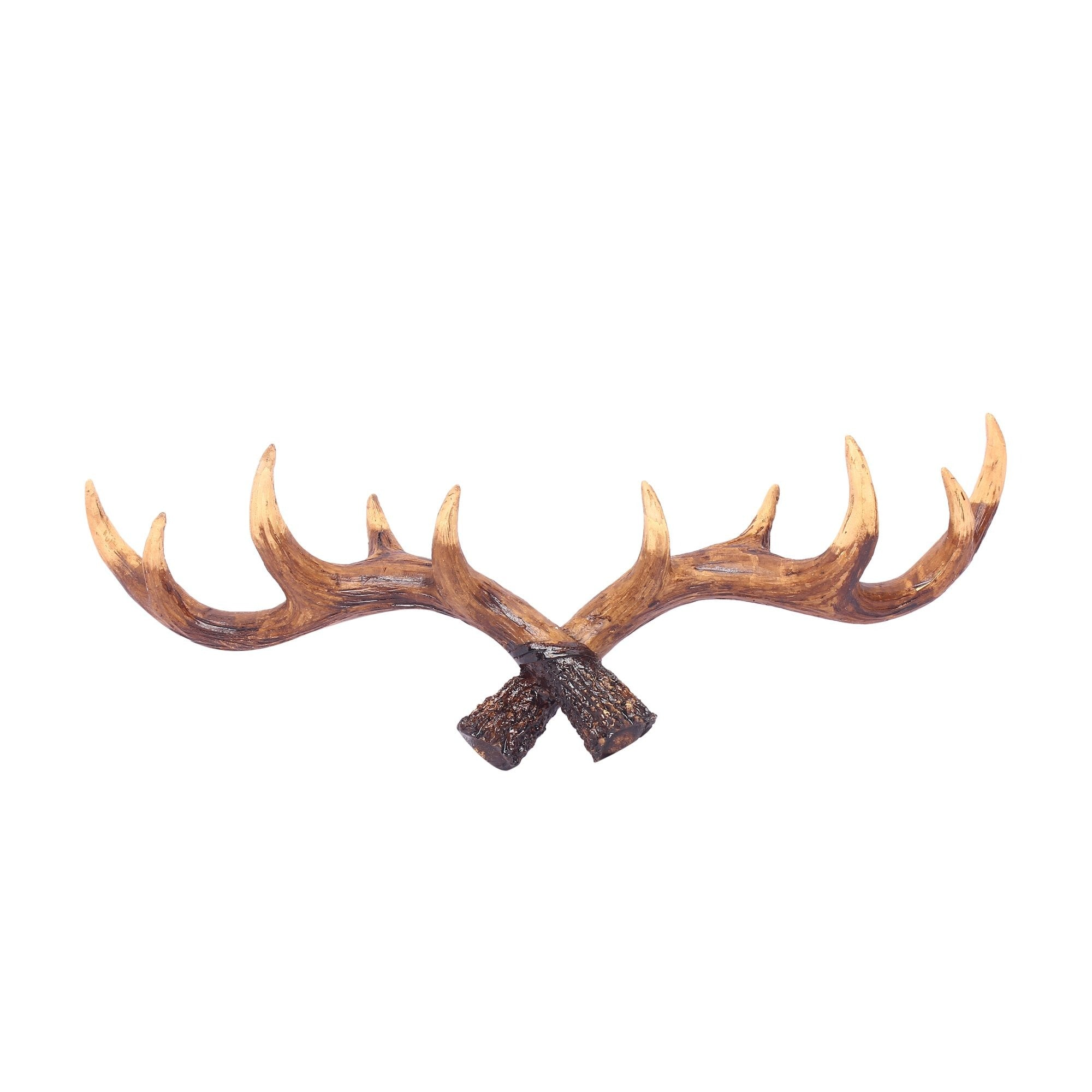 Stag Horns