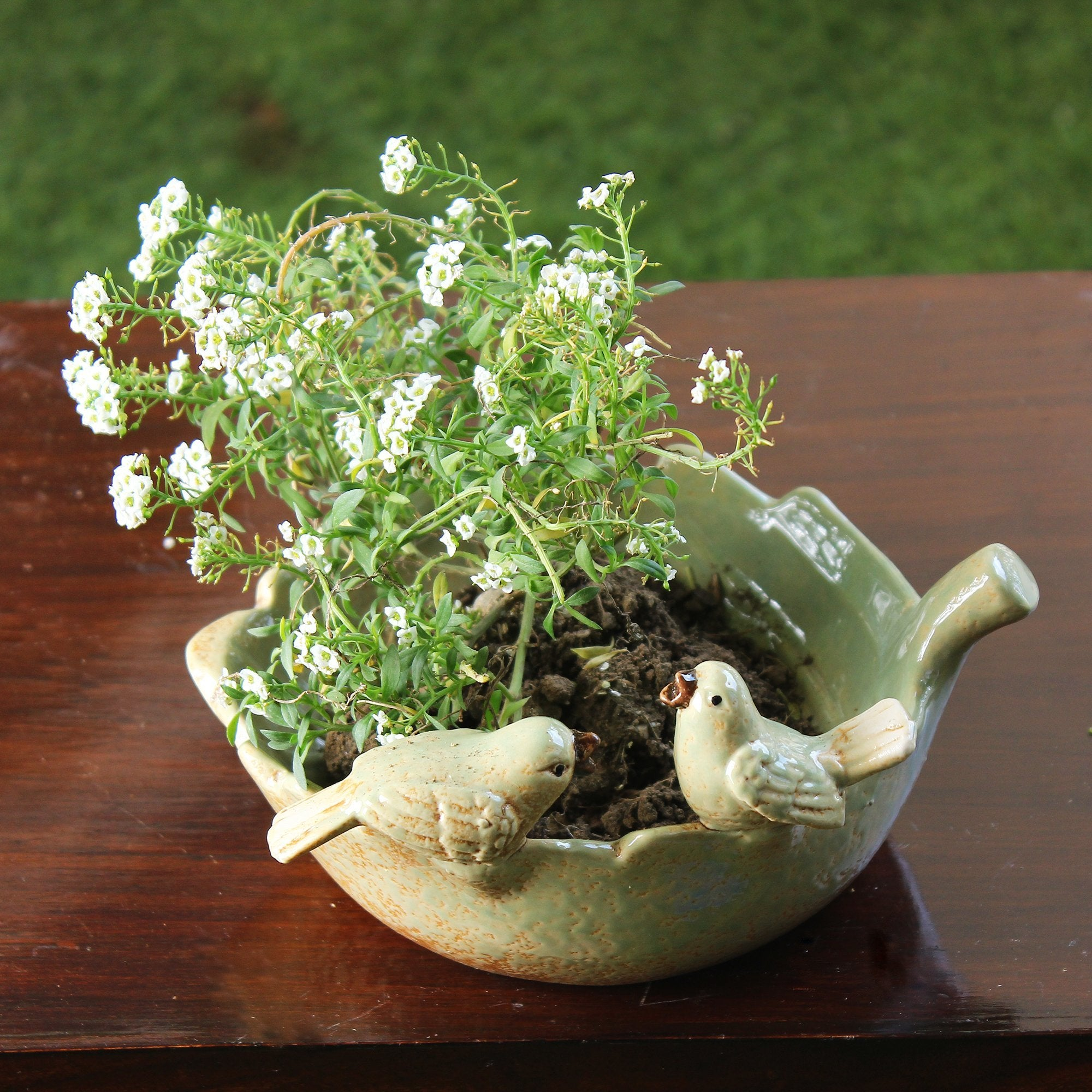 Birds & Leaf Planter
