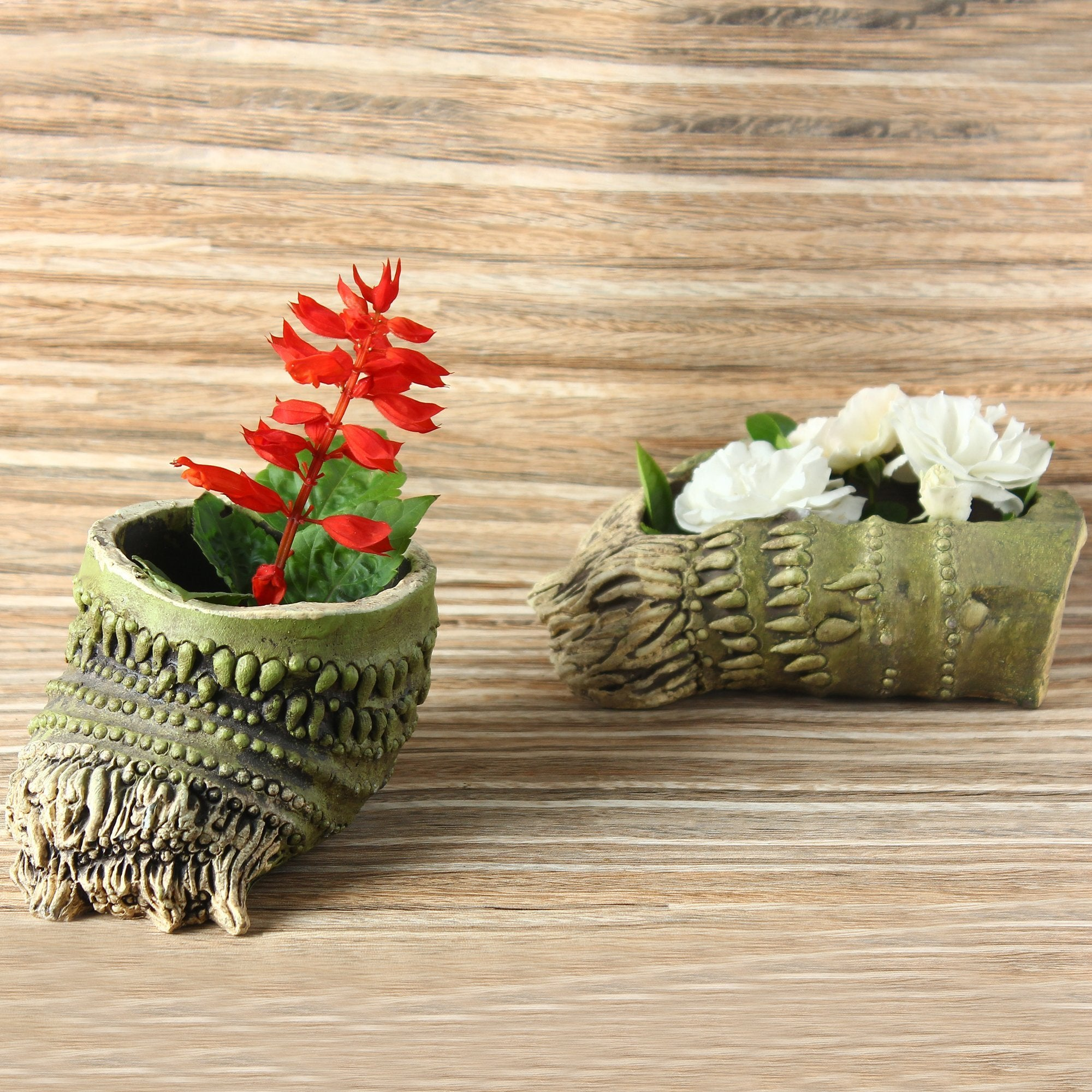 Wood Root Planter