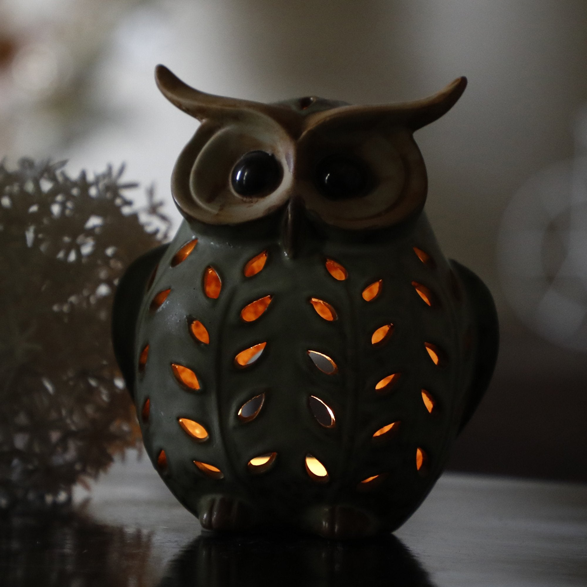 Owl With Candle Space