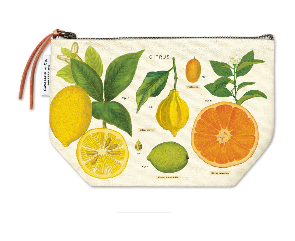 Cavallini Zippered Pouch - Citrus - FrenchWillow