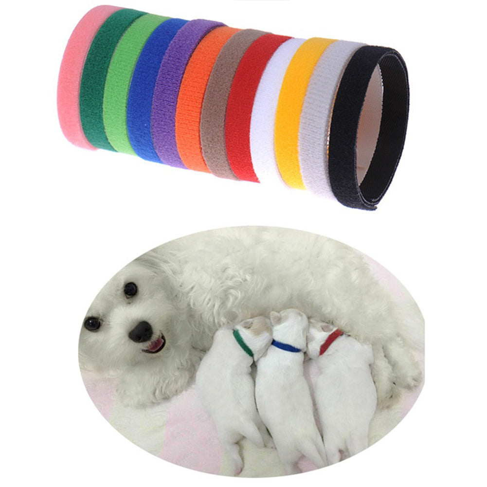 MilkySkinForever 12Pcs Little Dog Cat Puppy Whelping Identification Collar ID Bands Pet Supplies