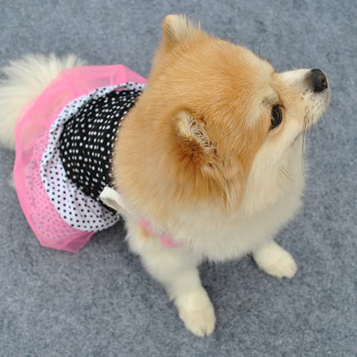 MilkySkinForever Fashion Puppy Dog Pet Princess Beautiful Dot Yarn Elastic Skirt Dress Clothes