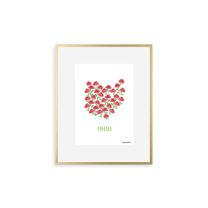 Ohio Scarlet Carnation Flower Print