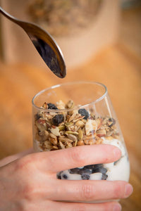 Coco, Bee & Nut: Grain Free Granola Blueberry Lemon
