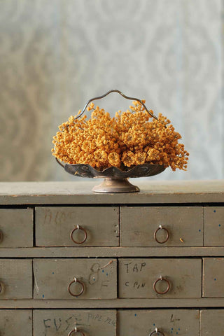 Astilbe in Mustard Bowl or Vase filler