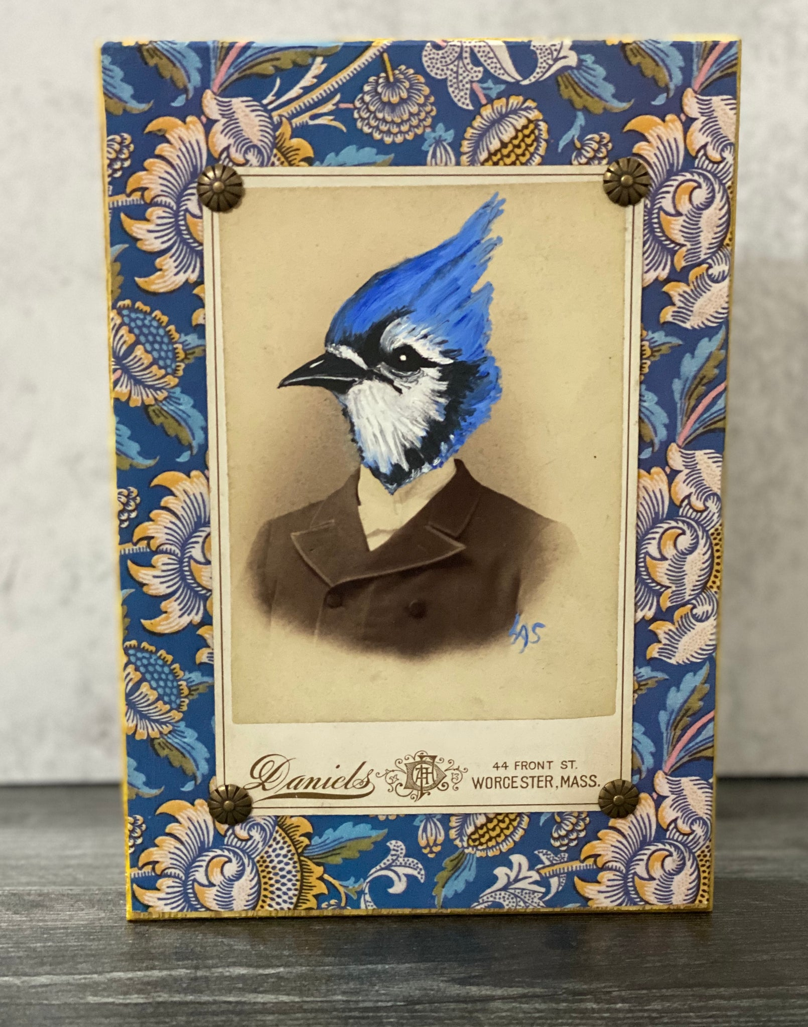 Hand-painted Whimsical Blue Jay Photograph