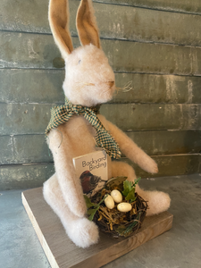 Handmade Backyard Bird Bunny