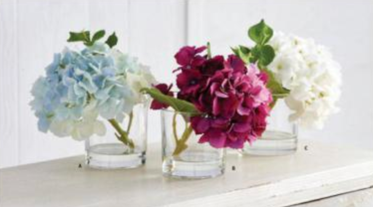 "9"" Real Touch Hydrangea in Glass Vase"