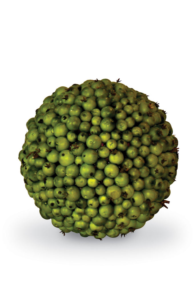5.5 Inch Green Berry Ball