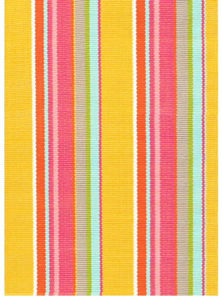 Happy Stripe Indoor/Outdoor Rug