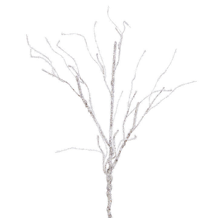 Iced Branch