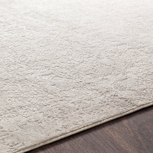 Light Gray & White Rug