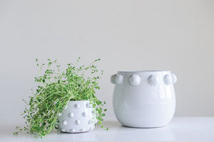 Planter With Raised Dots