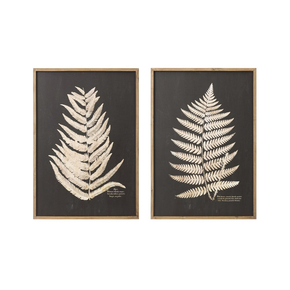 Black +Wood Framed Fern Print