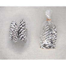 Load image into Gallery viewer, Whitewashed Pinecones in Bag