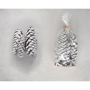 Whitewashed Pinecones in Bag