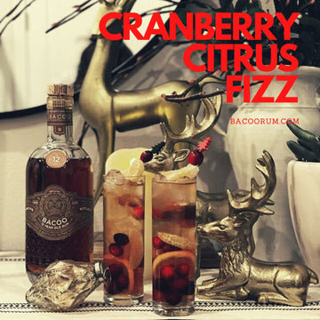 CRANBERRY CITRUS FIZZ