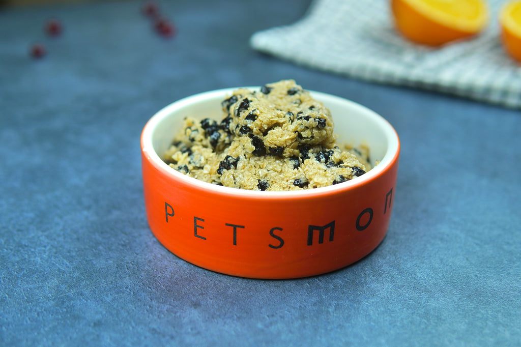 DIY Blueberry and Oatmeal Bars for Cats Recipe