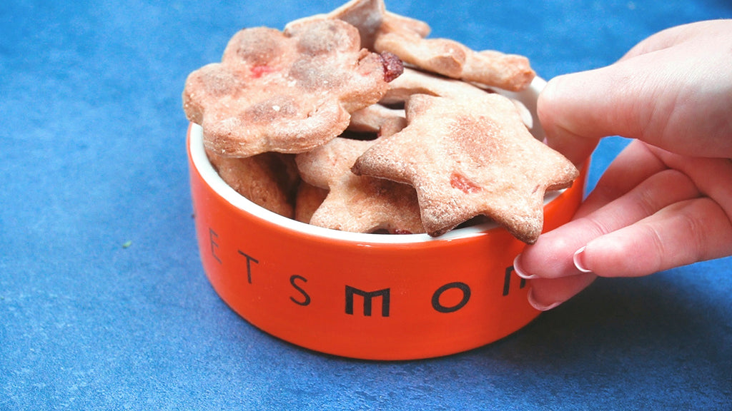 EZ Bake Strawberry K9 Cookies for Dogs
