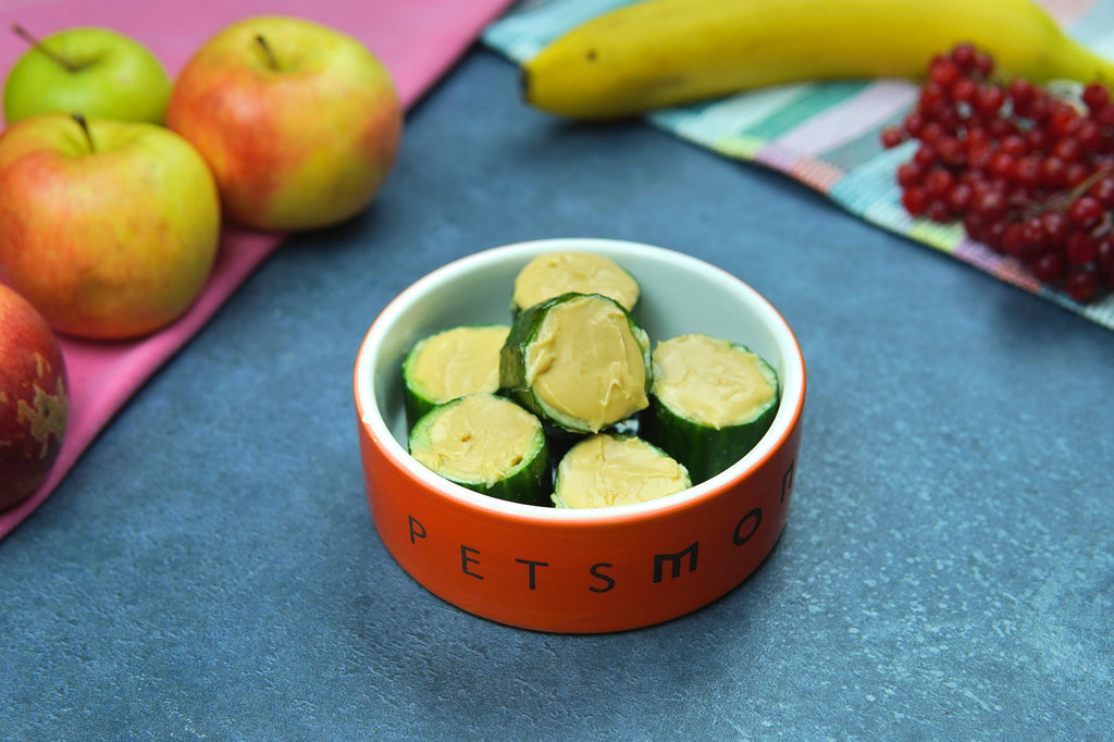 DIY EZ Nutty Cucumbers for Cats and Dogs Recipe