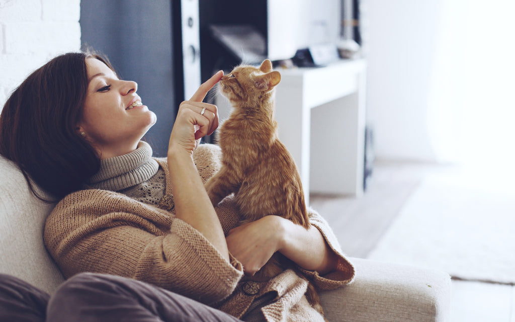 Secrets and Benefits of a Cat's Purr