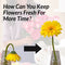 How Can You Keep Flowers Fresh For More Time?
