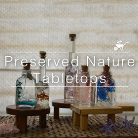 Preserved Nature Tabletops