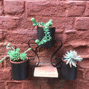 2 Tier Hanging Pot Stand