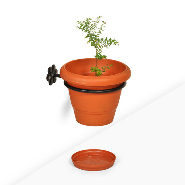 Wall Mounted Flower Pot Holder With Pot