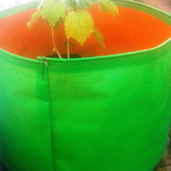Round Grow Bags for Herbs