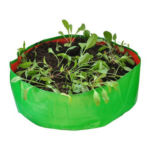 Round Grow Bags for Spinach