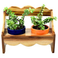 Quaint Wooden Bench 2 Pot Planter Garden Essentials myBageecha - myBageecha