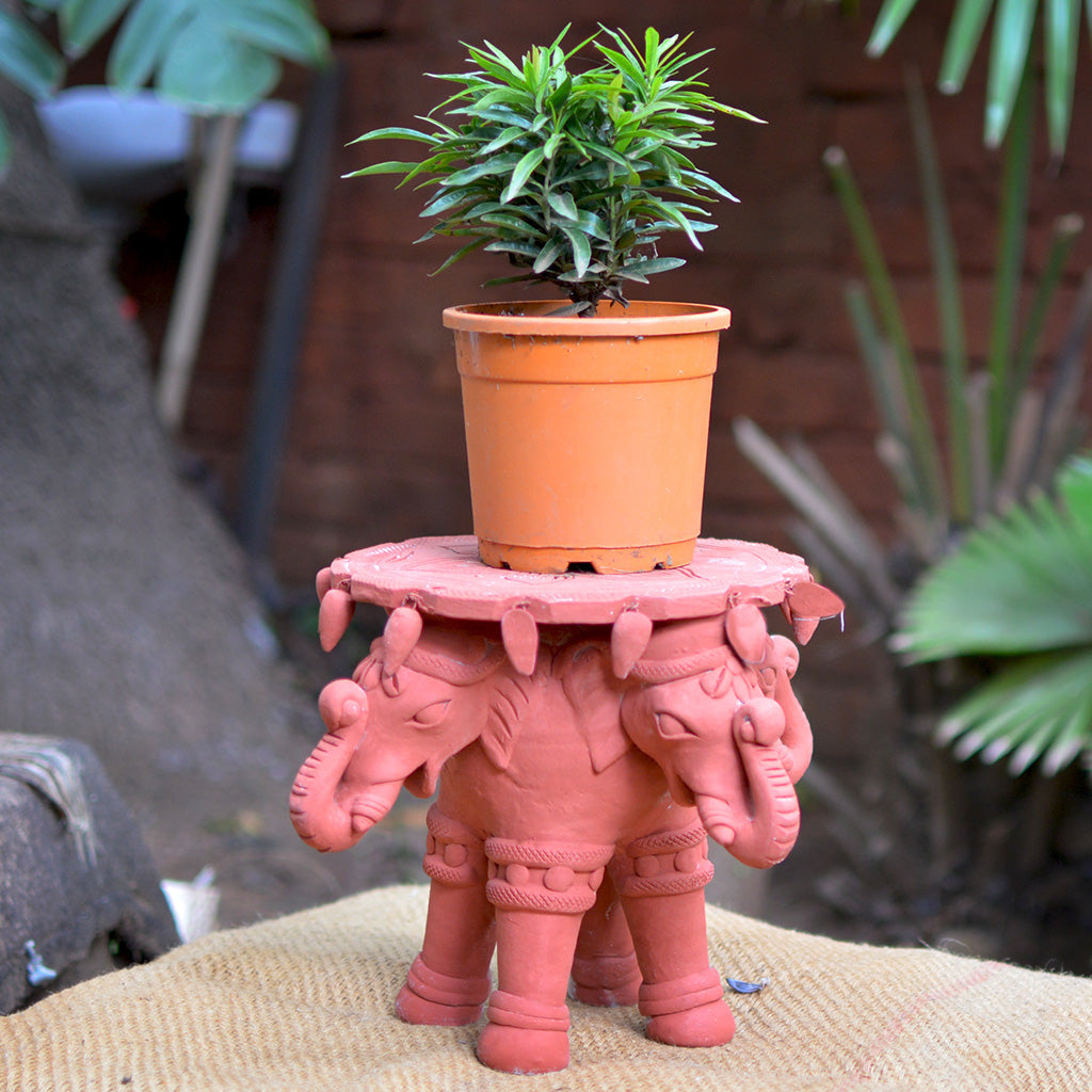 Four Headed Elephant Terracotta Stand