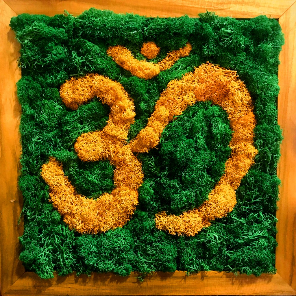'AUM' Moss Frame with Dark Wood