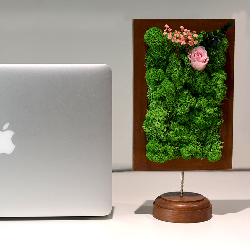 A Dainty Bloom in Pink Tabletop Moss Frame