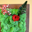 A Dainty Bloom in Red Tabletop Moss Frame