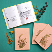 A Summer Breeze Pressed Flower Diary