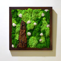 A Lichen Bog Moss Frame with Dark Wood