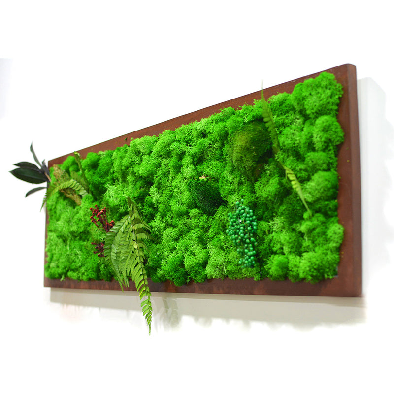 A Mystical Forest Moss Frame with Dark Wood