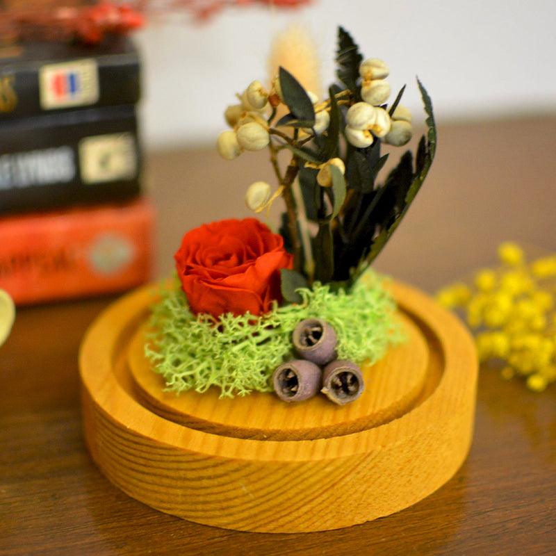 Enthralling Red Briar Miniature Tabletop