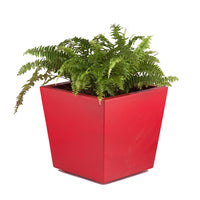 Antila Red FRP Planter