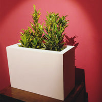 Auriga White FRP Planter